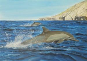 10 03 01 Dolphins.jpg-for-web-large - Kopie
